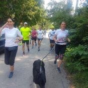 Indulunk-futni-Csécsei-Zolival